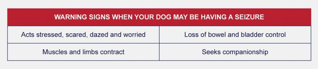 Warning signs when your dog may be having a seizure