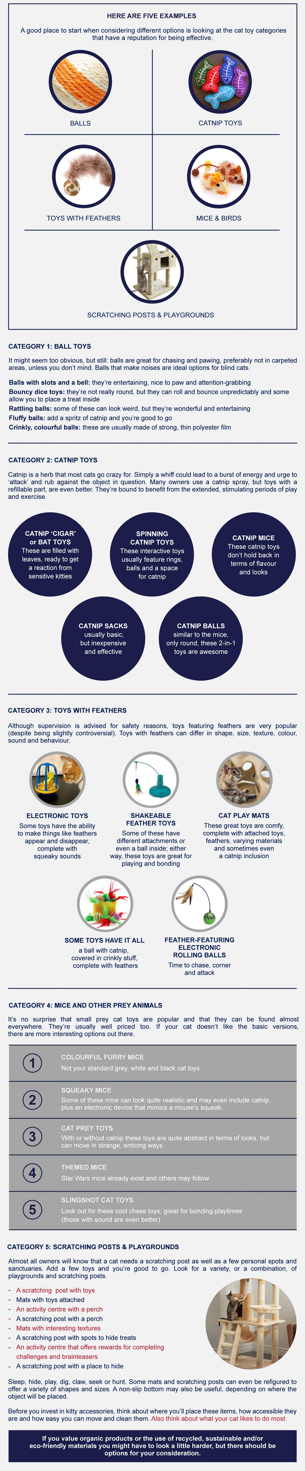 top interactive toys for cats-infographic